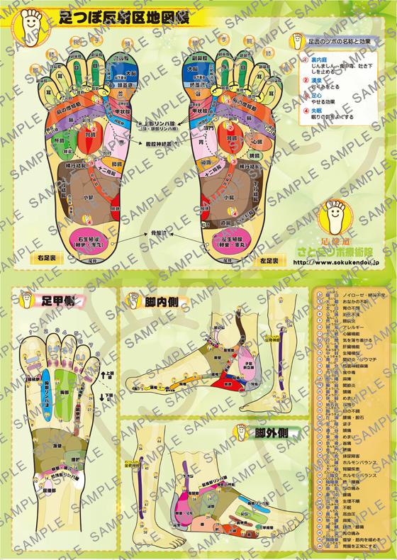 大地図帳ポスター B2 ポスター版(515×728)