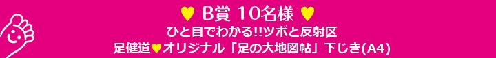 B賞 10名様 ひと目でわかる!!ツボと反射区 足健道オリジナル「足の大地図帖」下じき(A4)