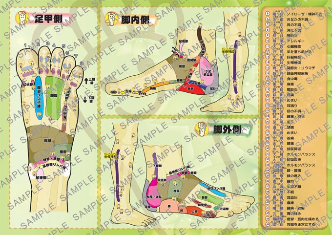 一目でわかる!ツボと反射区!便利な足の大地図帳♪(A4版)